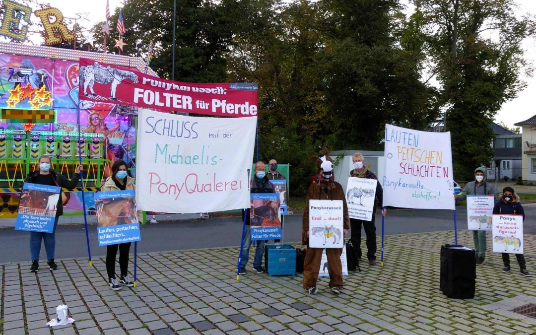 11 Tage Demo am Ponykarussell